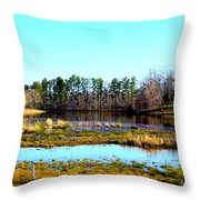 Lake Helen Lee Throw Pillow