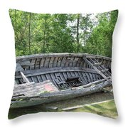 Lake Huron Relic Throw Pillow