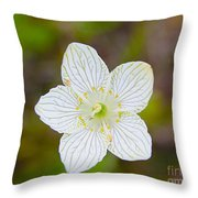 Lake Huron Wildflower Throw Pillow