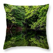 Lake Issaqueena Throw Pillow