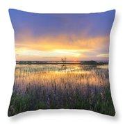 Lake Jackson Sebring Florida Panorama Throw Pillow