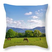 Lake Killarney From Aghadoe Hill County Kerry Throw Pillow