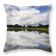 Lake Lagunita Stanford University Throw Pillow