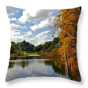 Lake Lancaster Throw Pillow by Denise Mazzocco