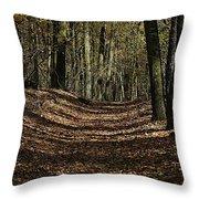 Lake Lansing Walk Throw Pillow