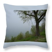 Lake Michigan Obscured Throw Pillow