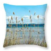 Lake Michigan Shore Grasses Throw Pillow