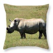 Lake Nakuru White Rhino Throw Pillow