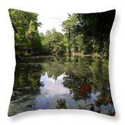 Lake On The Plantation Throw Pillow