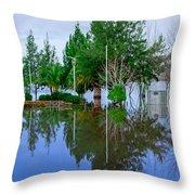 Lake Pateira IIi Throw Pillow