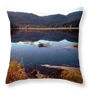 Lake Reflection Throw Pillow