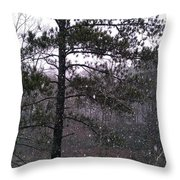 Lake Snowfall Throw Pillow