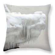 Lake Superior Ice Alligator Throw Pillow