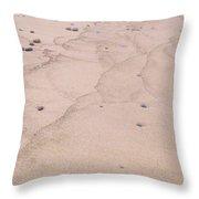 Lake Superior Sandy Beach Throw Pillow