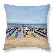 Lake Superior Shipwreck Throw Pillow