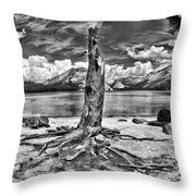 Lake Tenaya Giant Stump Black And White Throw Pillow