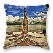 Lake Tenaya Giant Stump Throw Pillow