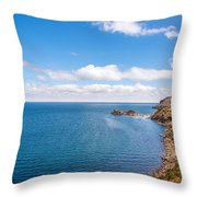 Lake Titicaca Coastline  Throw Pillow
