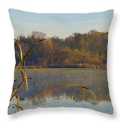 Lake Towhee In Autumn Throw Pillow