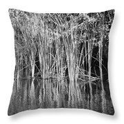 Lake Trafford Reeds Throw Pillow