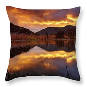 Lake View 1 Throw Pillow
