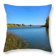 Lake View Throw Pillow