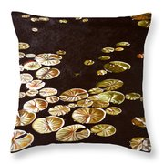 Lake Washington Lily Pad 10 Throw Pillow
