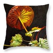 Lake Washington Lily Pad 18 Throw Pillow