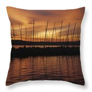 Lake Washington With Mount Rainier And Marina Throw Pillow