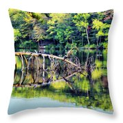 Lake Waterford Throw Pillow