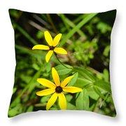 Lake Winfield Scott Wild Black-eyed Susan Flowers Throw Pillow