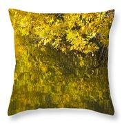 Lake Winona Autumn 12 Throw Pillow