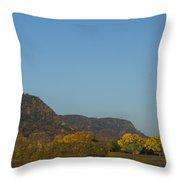 Lake Winona Autumn 6 Throw Pillow