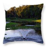 Lake With Fountain Throw Pillow