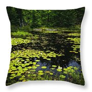 Lake With Lily Pads Throw Pillow