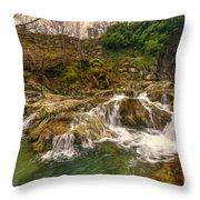 Lakeland Stream Throw Pillow