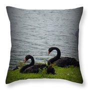 Lakeland Treasures Throw Pillow