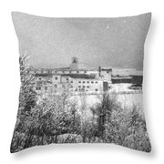 Lakeshore 1959 Throw Pillow
