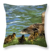 Lakeside Stroll 9836 Throw Pillow