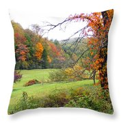 Lamance Valley In The Fall Throw Pillow