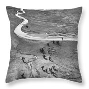 Lamar Valley Black And White Throw Pillow