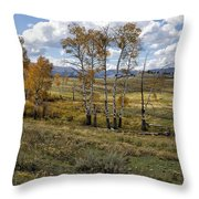 Lamar Valley In The Fall - Yellowstone Throw Pillow