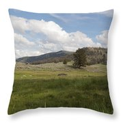 Lamar Valley No. 2 Throw Pillow