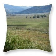Lamar Valley Yellowstone National Park Throw Pillow