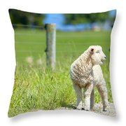 Lamb On The Farm Throw Pillow