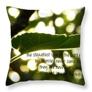 Lamentations 3 Throw Pillow
