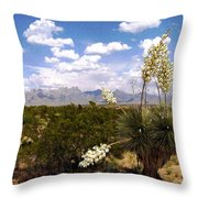 Lampadres De Dios Throw Pillow