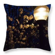 Lamplight 1 Throw Pillow