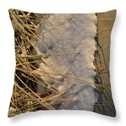 Lanceing Through The Layers  Throw Pillow