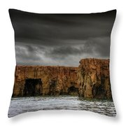 Land Of The Beginning Of Time... Throw Pillow